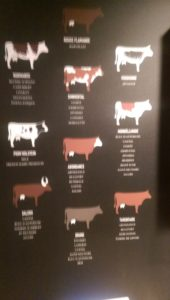 What's your cow sign?